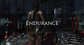 Tombraider – Endurance
